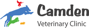 Camden Veterinary Clinic
